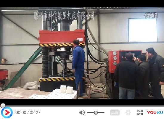 <b>科信牛羊舔盐砖液压机工作视频</b>